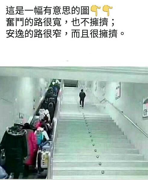電梯與扶梯.jpg