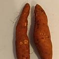 紅番薯.jpg