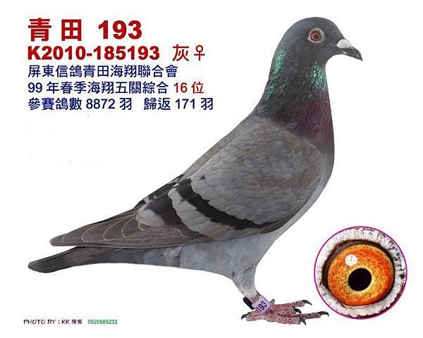 16-10-185193-1.jpg