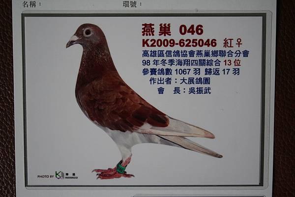 4E13等照片 (2).jpg