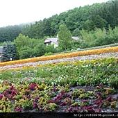 北海道 127.jpg