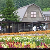 北海道 129.jpg