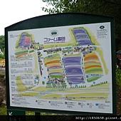 北海道 132.jpg