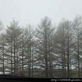 北海道 027.jpg
