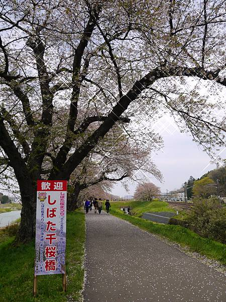 2015-4-19 Day 3