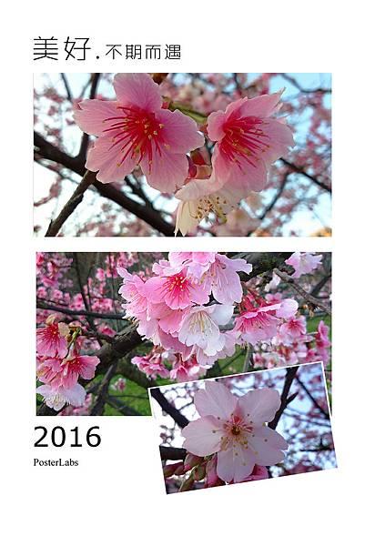 HBGC_20160213073910