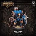 31088_SentinelWEB.jpg