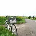 沒有變速的腳踏車