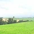 很舒服的田園景色