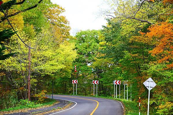 大沼公園環湖公路