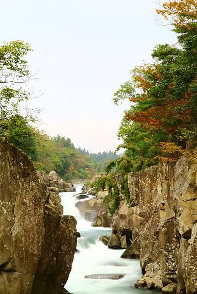 沒幾片紅葉的溪流