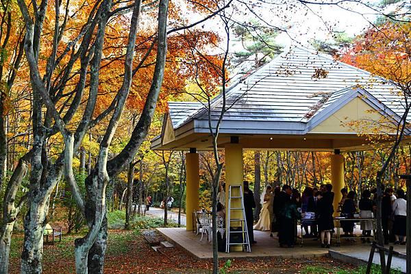 紅葉林中的婚禮