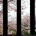 4/4 姫路城