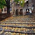 10/22 Schloss Heidelberg