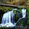 10/26 Triberger Wasserfälle