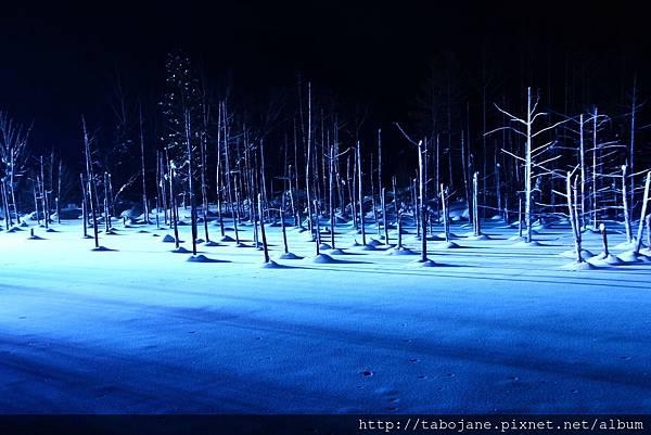 2/7 青い池ライトアップ
