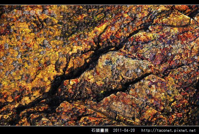 石頭畫展_35.jpg