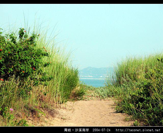 青岐。沙溪海岸_47.jpg
