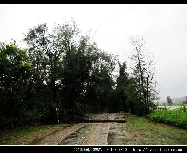 2010凡那比颱風_12.jpg
