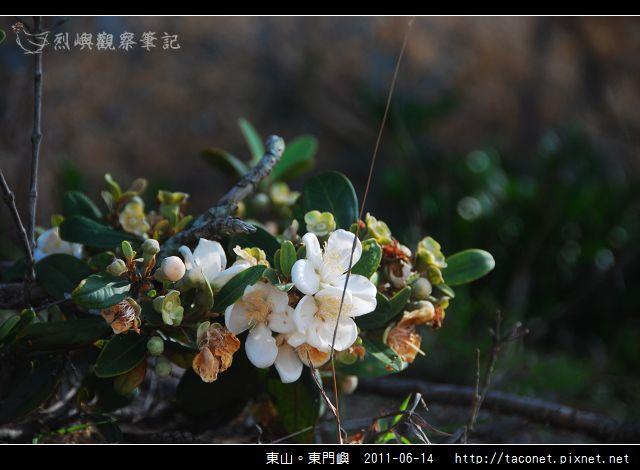 東山。東門嶼_49.jpg
