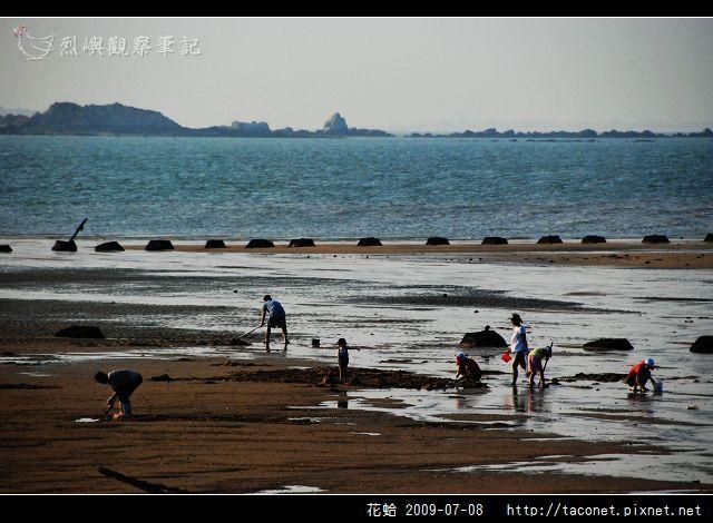 花蛤_04.jpg