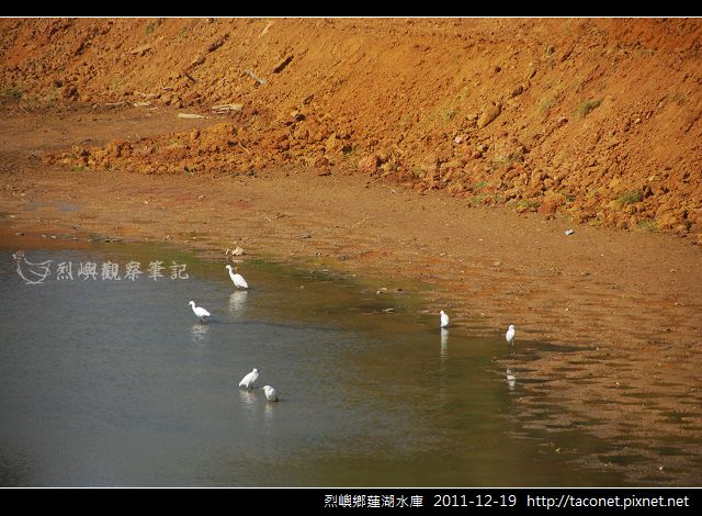 蓮湖_660.jpg