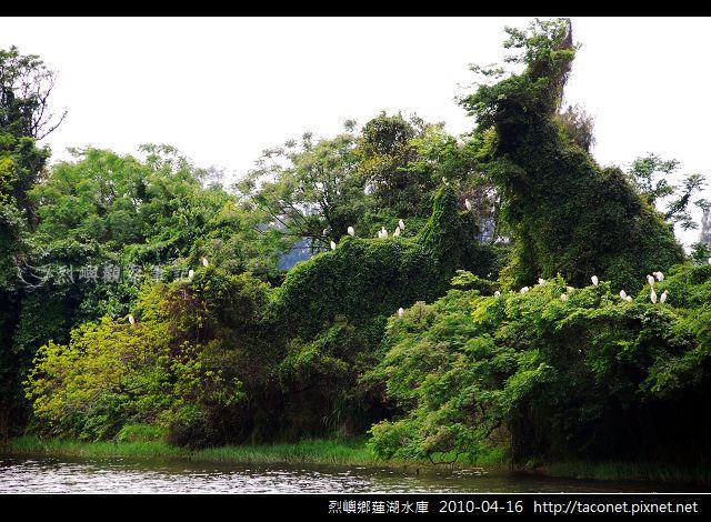 蓮湖_676.jpg