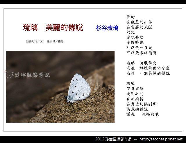 孫金星攝影作品_09.jpg