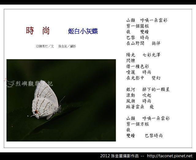 孫金星攝影作品_16.jpg