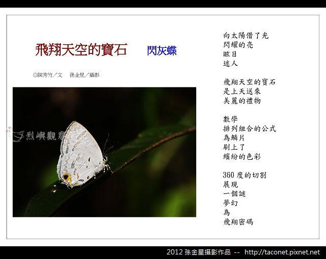 孫金星攝影作品_19.jpg