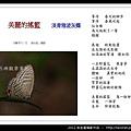 孫金星攝影作品_21.jpg