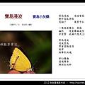 孫金星攝影作品_31.jpg