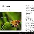 孫金星攝影作品_36.jpg