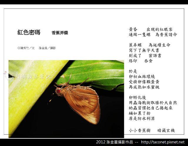 孫金星攝影作品_39.jpg