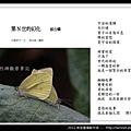 孫金星攝影作品_42.jpg