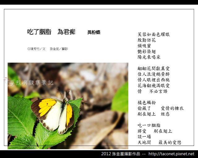 孫金星攝影作品_45.jpg