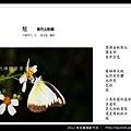 孫金星攝影作品_44.jpg