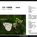 孫金星攝影作品_47.jpg