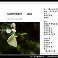 孫金星攝影作品_49.jpg