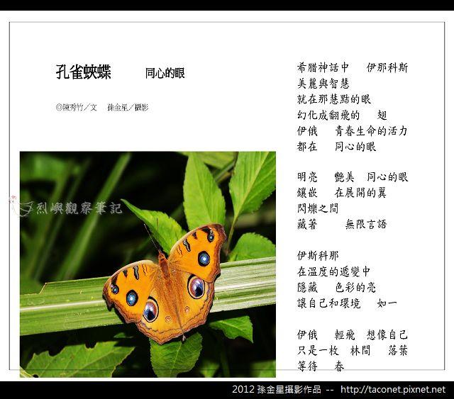 孫金星攝影作品_56.jpg