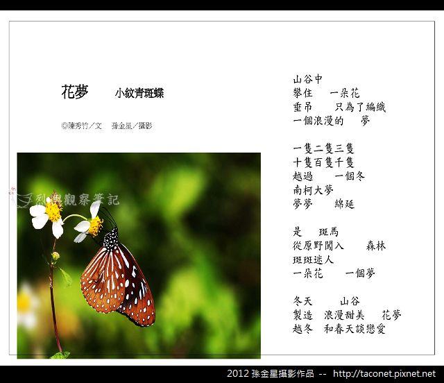 孫金星攝影作品_54.jpg