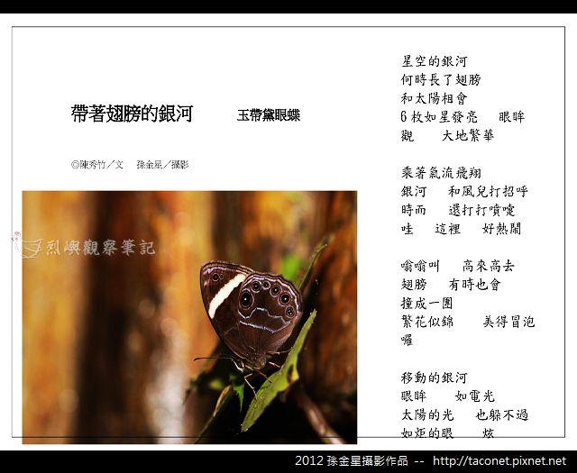 孫金星攝影作品_59.jpg