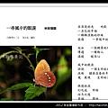 孫金星攝影作品_63.jpg