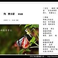 孫金星攝影作品_65.jpg
