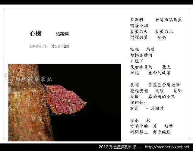 孫金星攝影作品_66.jpg