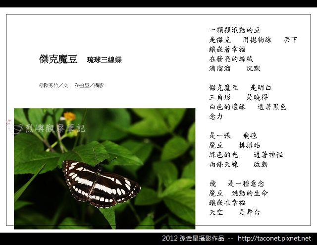 孫金星攝影作品_68.jpg