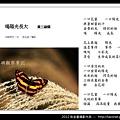 孫金星攝影作品_72.jpg