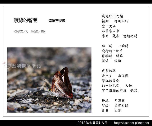 孫金星攝影作品_75.jpg