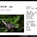 孫金星攝影作品_77.jpg