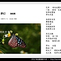 孫金星攝影作品_79.jpg